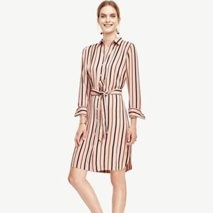 Ann Taylor blush pink striped shirt dress